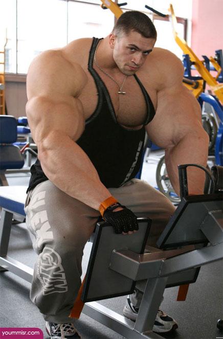 下から目線で「筋肉」