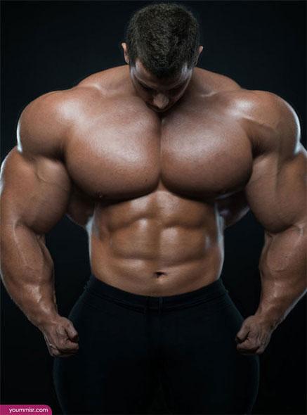 ムキっと「筋肉」
