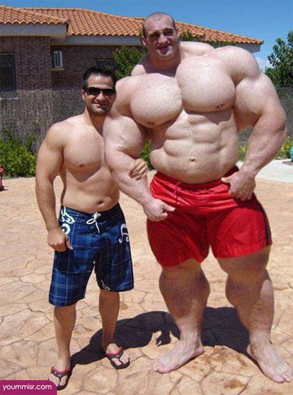 家族で「筋肉」
