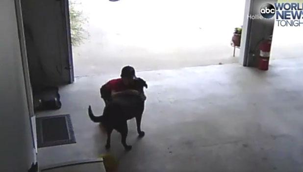 一目散に犬を抱き