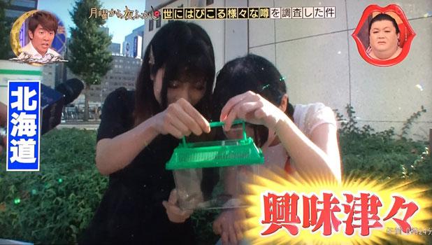 「興味津々」な北海道民