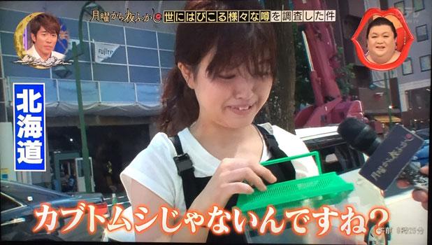 「カブトムシじゃないんですよね?」と北海道民
