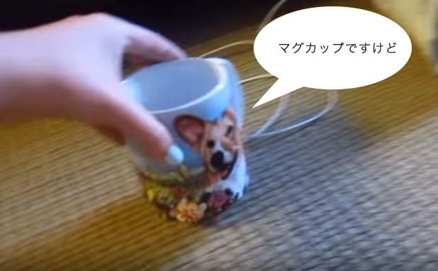 マグカップです。はい。