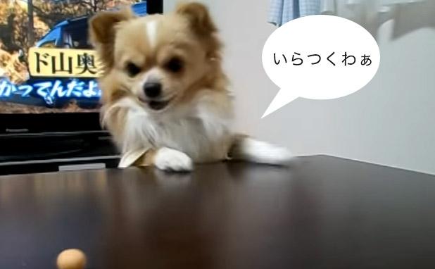 食べたいわぁ